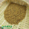 Seed of Common Fenugreek / 葫芦巴 / Hu Lu Ba