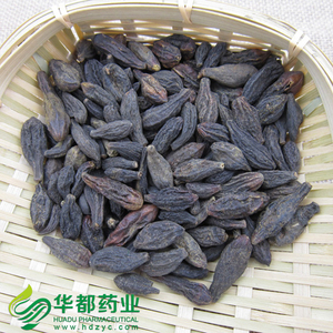 Immature fruit of Medicine Terminalia / 西青果 / Xi Qing Guo