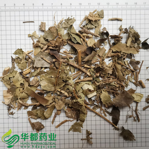 Ivy leaves / 常春藤 / Chang Chun Teng